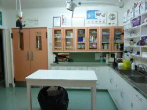 Veterinary Services - Examination room