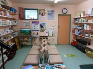 Veterinary Services - Waiting room